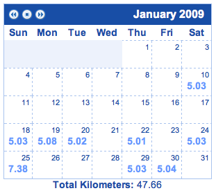 My January '09 run schedule
